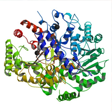 Restoring The Methionine Synthase Enzyme course image